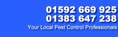 call Pest Control Fife Dunfermline Glenrothes Kirkaldy Kinross on 07591 035 288